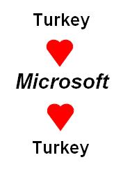 ms-turkey.JPG